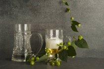 Beer glasses and a tendril of hops on gray surface — Stock Photo