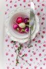 Ravanelli freschi in ciotola vintage — Foto stock