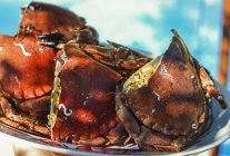Vista close-up de caranguejos recheados em prato branco — Fotografia de Stock