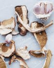 Affettate i funghi porcini — Foto stock