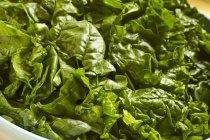 Foglie di spinaci freschi tritati — Foto stock