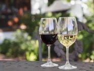 Vermelho e branco vinho Sul-Africano — Fotografia de Stock