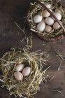 Uova fresche in un nido di paglia — Foto stock