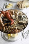 Seafood platter with lobster and oysters — Stock Photo