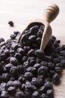 Чорний Чик-горох із совок — стокове фото