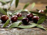 Olive nere con foglie — Foto stock