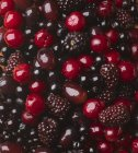 Cerezas frescas y moras - foto de stock