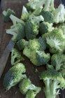 Brócoli fresco cortado con cuchillo - foto de stock