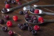 Wild raspberries and blackberries — Stock Photo