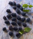 Fresh Blackberries with leaves — Stock Photo
