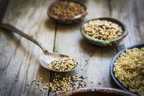 Brown rice, quinoa and buckwheat — Stock Photo