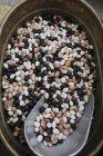 Fagioli cimelio colorati in secchio — Foto stock