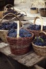 Grapes in wicker baskets — Stock Photo