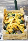 Zucca ornamentale verde e giallo — Foto stock
