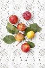 Frisch gepflückten Pflaumen mit Blättern — Stockfoto