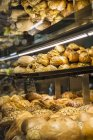 Різні види хліба у хлібобулочні — стокове фото