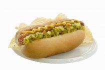 Hot dog with potato crisps — Stock Photo