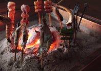 Detailansicht der Robatayaki Grill gegrillt in versunkenen Herd — Stockfoto