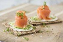 Pane croccante con salmone affumicato — Foto stock