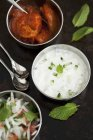 Cucumber and mint raita and salad — Stock Photo
