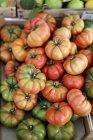 Costoluto beefsteak tomatoes — Stock Photo