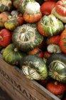 Kiste mit Turban squash — Stockfoto