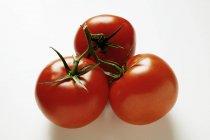 Tomate rojo fresco - foto de stock