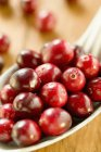 Fresh cranberries on spoon — Stock Photo