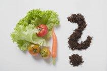 Листя салату на білому — стокове фото