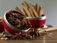Cardamomo e bastoncini di cannella — Foto stock