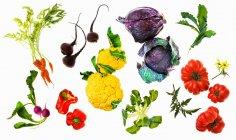 Vários verduras em uma superfície branca — Fotografia de Stock