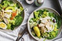 Зелений салати з куркою на тарілки — стокове фото