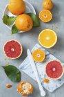 Zitrusfrüchte, ganze und halbierte — Stockfoto