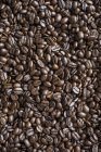 Grains de café frais — Photo de stock