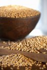 Grains of wheat in bowl — Stock Photo