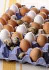 Castanho com ovos brancos e ovos de codorna — Fotografia de Stock