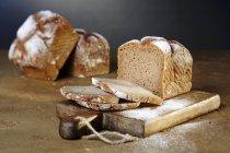 Pane di segale integrale — Foto stock