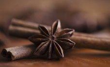 Anice stellato e bastoncini di cannella — Foto stock