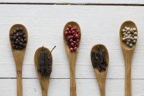 Varios tipos de granos de pimienta - foto de stock