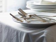 Detailansicht des silbernen Gabeln Heap auf Platte — Stockfoto