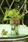 Ramitas de fresas silvestres - foto de stock