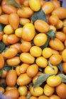Kumquat fresco con foglie — Foto stock