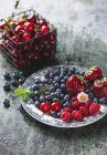 Bacche fresche sulla zolla — Foto stock