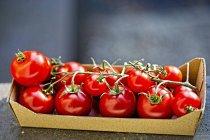 Tomates de vid en cartón - foto de stock