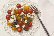Insalata di pomodori con mozzarella e basilico — Foto stock