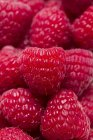 Frambuesas rojas frescas - foto de stock