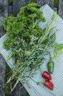 Prezzemolo a foglia riccia e peperoncino rosso — Foto stock