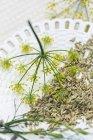 Fenchelsamen und Blumen auf einer keramischen Platte — Stockfoto
