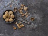 Semillas de nogal y Cascanueces - foto de stock