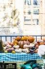 Zucche e zucche assortiti — Foto stock
